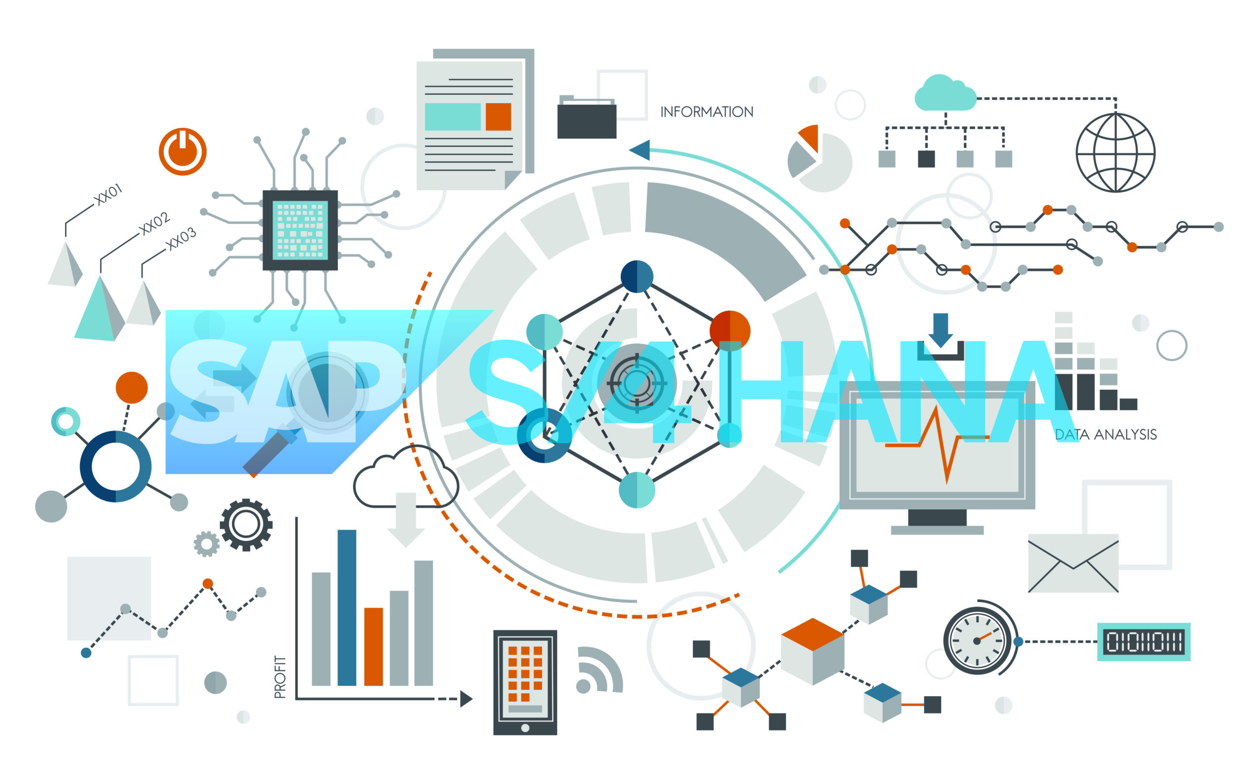 sap s4 hana 2019 overview